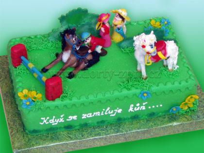 dort koňské dostihy, dětský