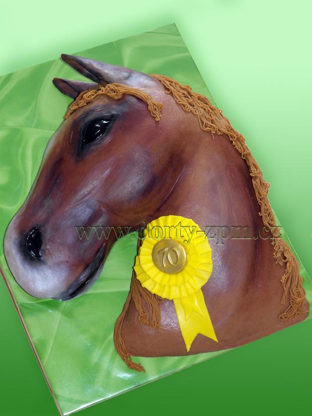 dort, kůň, hlava, horse, head
