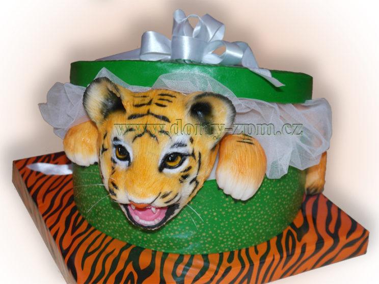 dort, dětský, tygr, krabice