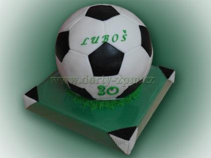 dort fotbalový míč, sportovní