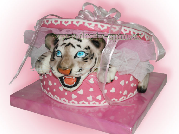 dort, dětský, bílý, tygr, krabice, dárek