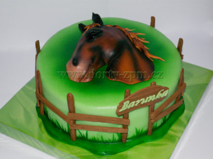 dort kůň, hlava