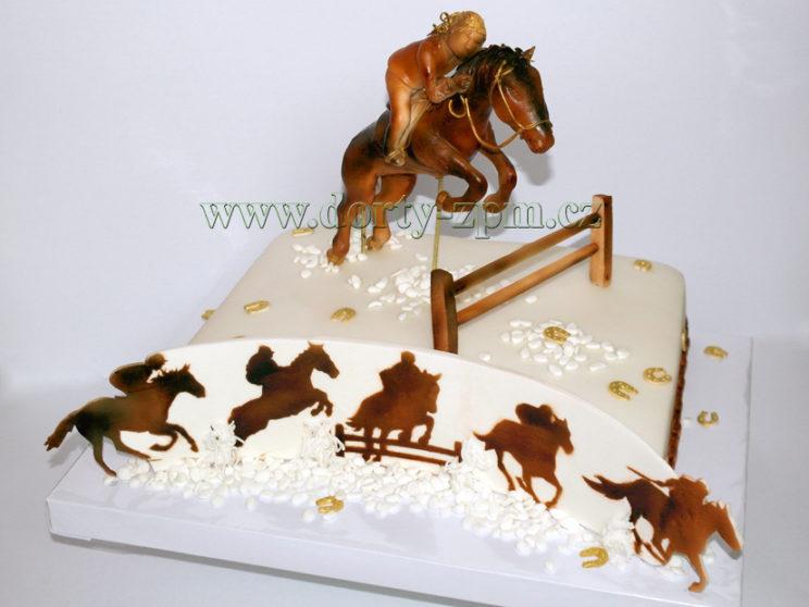 dort koňské dostihy, sportovní
