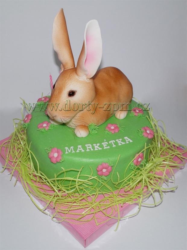 dort zajíček