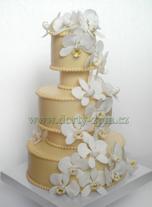 svatební dort, orchideje Phalenopsis