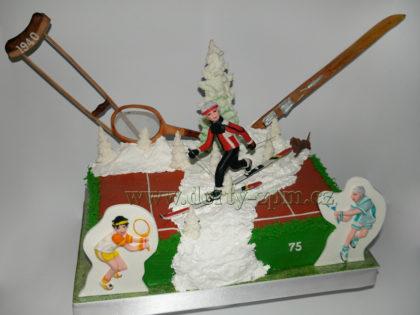 dort tenis a lyžování, sportovní, berle