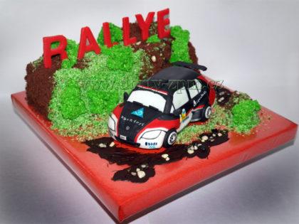 dort závodní auto