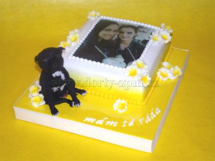 dort s jedlou fotkou