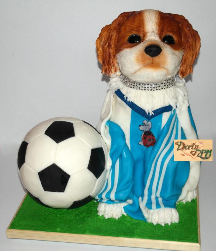 dort,pes,míč,kopaná,dres,fotbal
